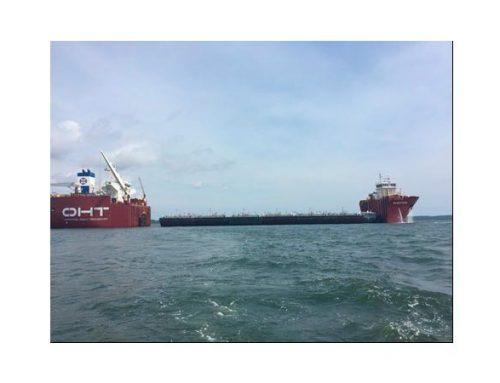 Inspección de garantía marítima (Marine warranty survey)